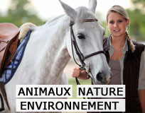 Animaux, Nature, Environnement
